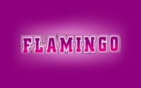 Flamingo Club Casino